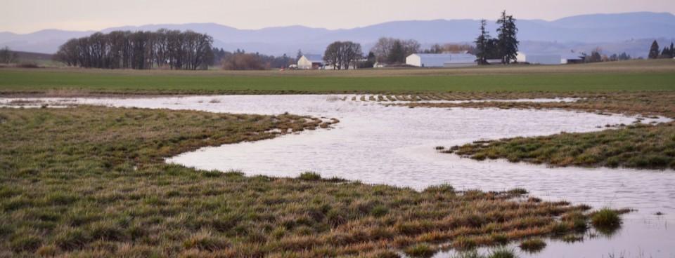Rainfall's Patterns